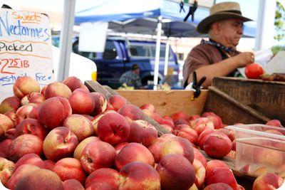 Cal farmers market 7