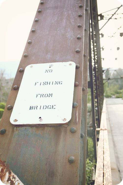 Mm bridge 6