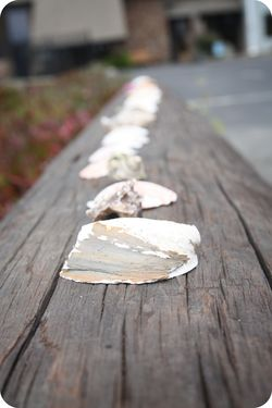 Bodega pier shells