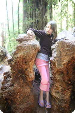 Redwood mckaylah in log