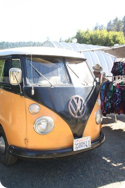 Redwoods VW bus
