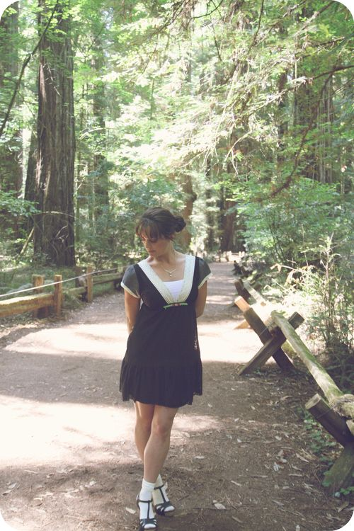 MM redwood forest 5