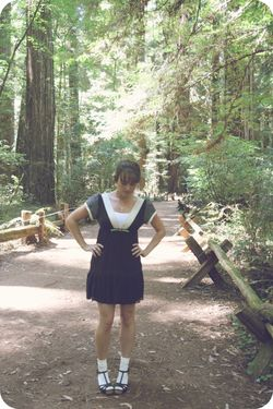 MM redwood forest 1