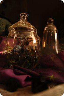 Potion specimen jars