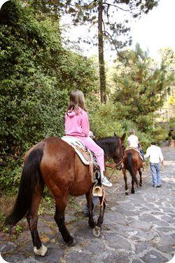 2 girls horses
