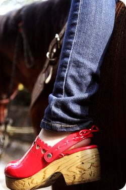Red clogs horse