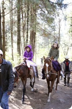Girls horses hike