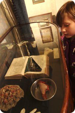 Holmes specimens