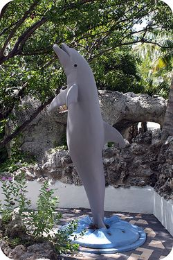 Flipper grave