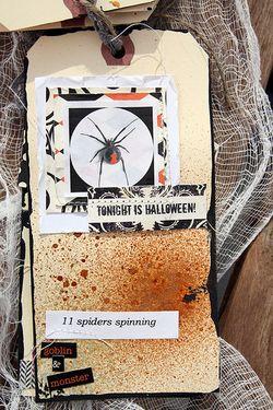 13 days spiders 11