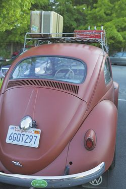 Summer VW bug