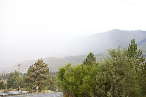 Summer mtn fog