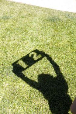 Summer shadow bday