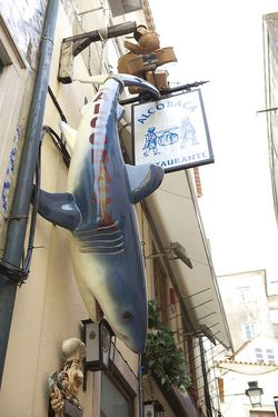 Portugal shark sign