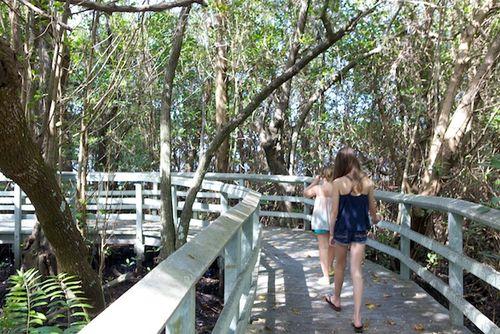 Secret woods walkway