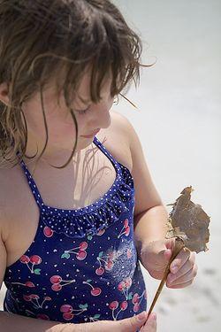 LDW ava crab shell