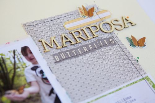 Mariposa title close 2 (1)