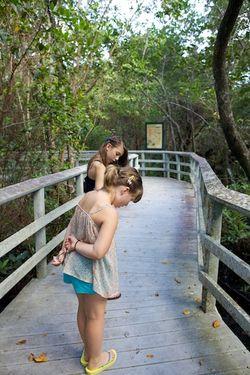 Secret woods sisters looking