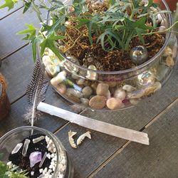 House terrarium fern