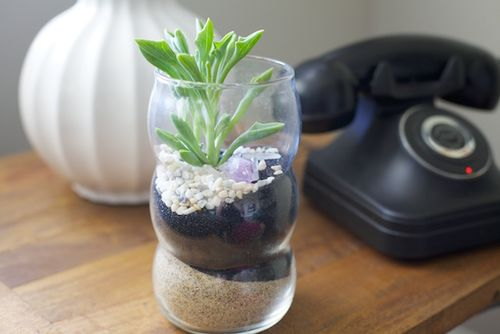 Terrarium black sand full